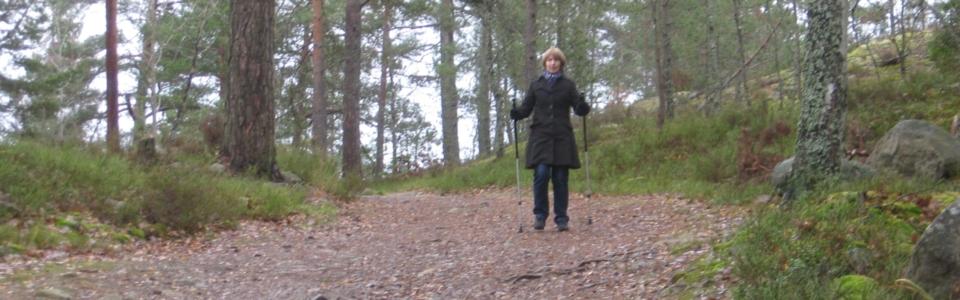 Marianne-skogen